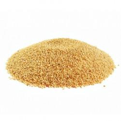 Семена амаранта Россия